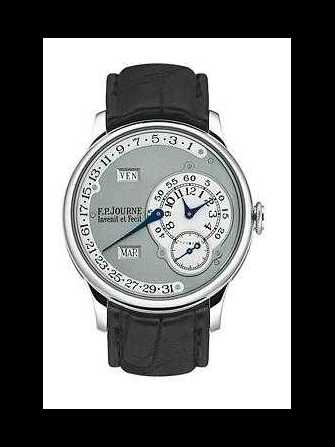 F.P. Journe Octa Calendrier FP22 Watch - fp22-1.jpg - blink