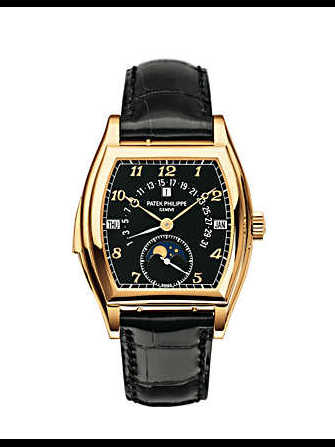 Patek Philippe 5013J-010 5013J-010 Watch - 5013j-010-1.jpg - blink